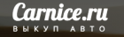 Carnice.ru